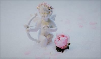 angel-花わ.jpg
