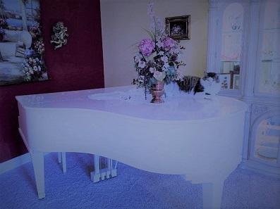 cat-白いグランドピアノb.jpg