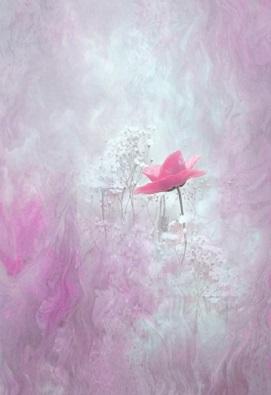 blossomピンクポピー2.jpg