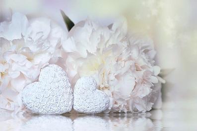 heart-牡丹2_2.jpg